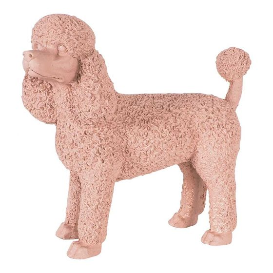 Early Settler Poodle
